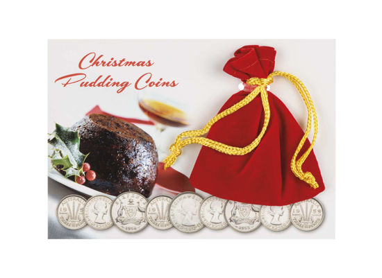 9915108 Christmas Pudding Coin Pack