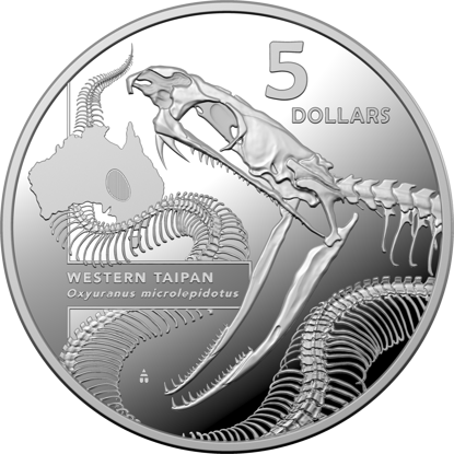 Reverse of the 10378 2020 $5 Silver Western Taipan Proof Coin